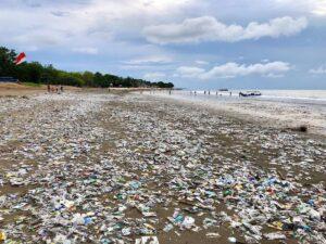 Inquinamento di plastica, Red. Thunders